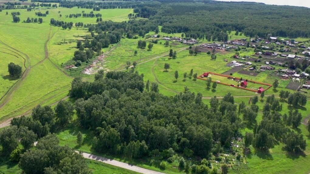 В Новосибирской области могут снизить стоимость земельных участков сельскохозяйственного назначения