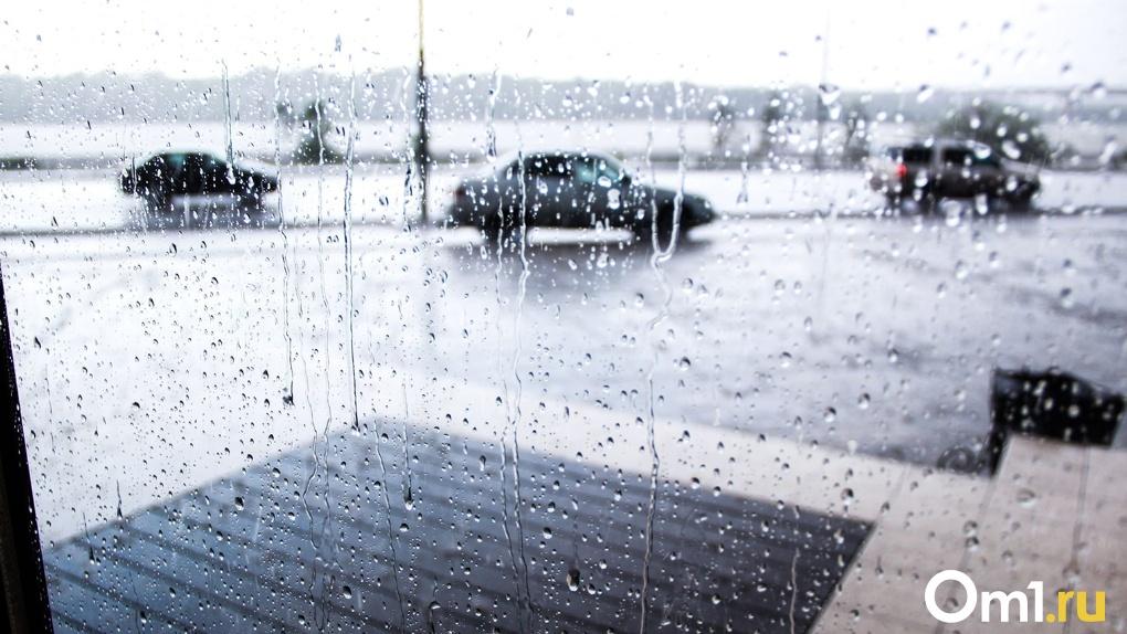 Грозы, дождь и ветер: на Омск надвигается резкое похолодание