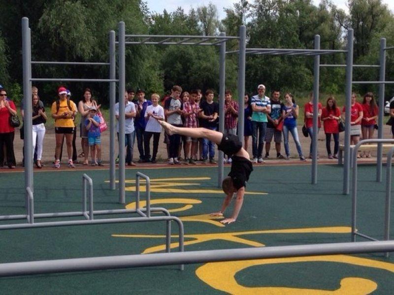 В Омске на Зеленом острове появятся оригинальные спортивные объекты