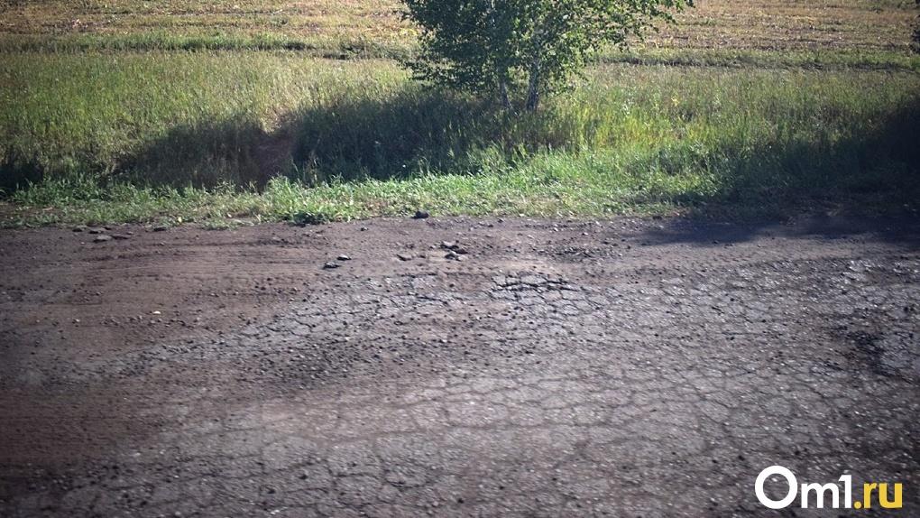 Омичка пожаловалась на ужасное состояние дороги, по которой вынуждены ездить дети-инвалиды