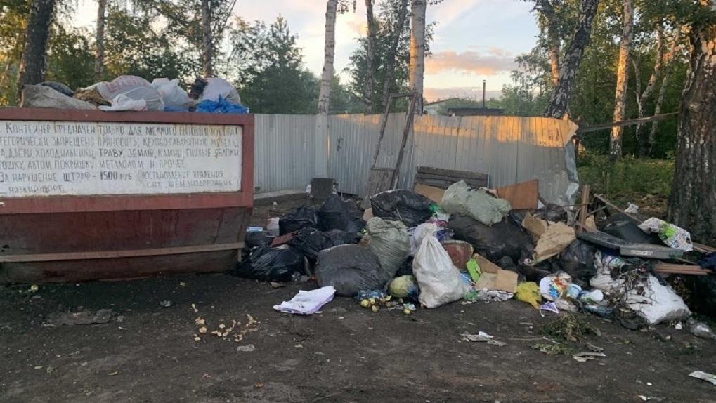 Новосибирский мусор выставили на аукцион за 11,6 млрд рублей
