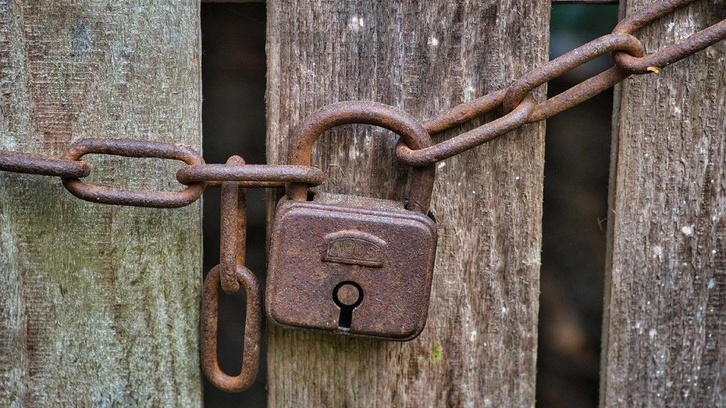 В Омской области объявили карантин из-за опасного вируса
