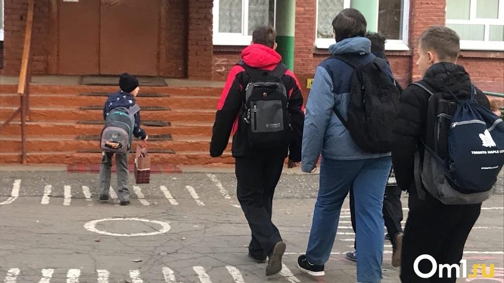 В Омске закрыли на карантин уже 117 классов и 8 групп в детсадах. Полный локдаун в двух школах