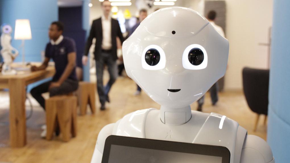 В Омске презентовали робота-продавца Арину