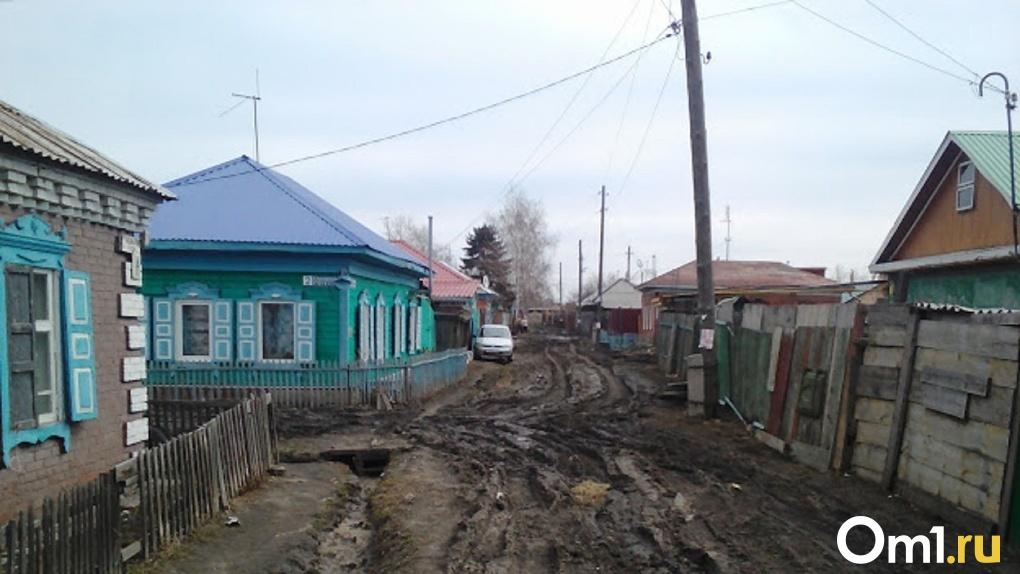 В Омске ликвидировали деревню-призрак, которая не существует уже 10 лет