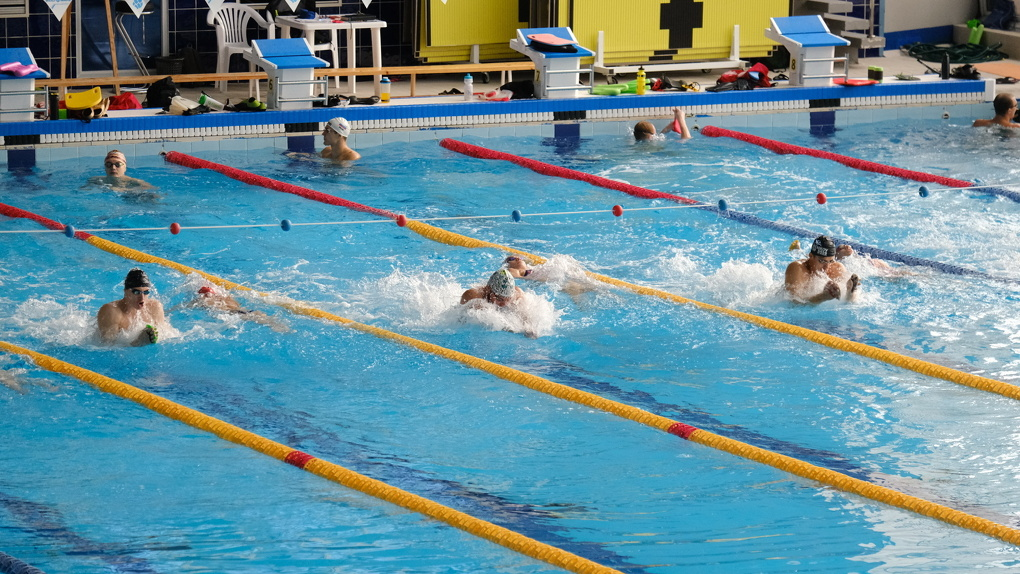 Почти 50 млн рублей требуется на ремонт витража новосибирского бассейна «Нептун»