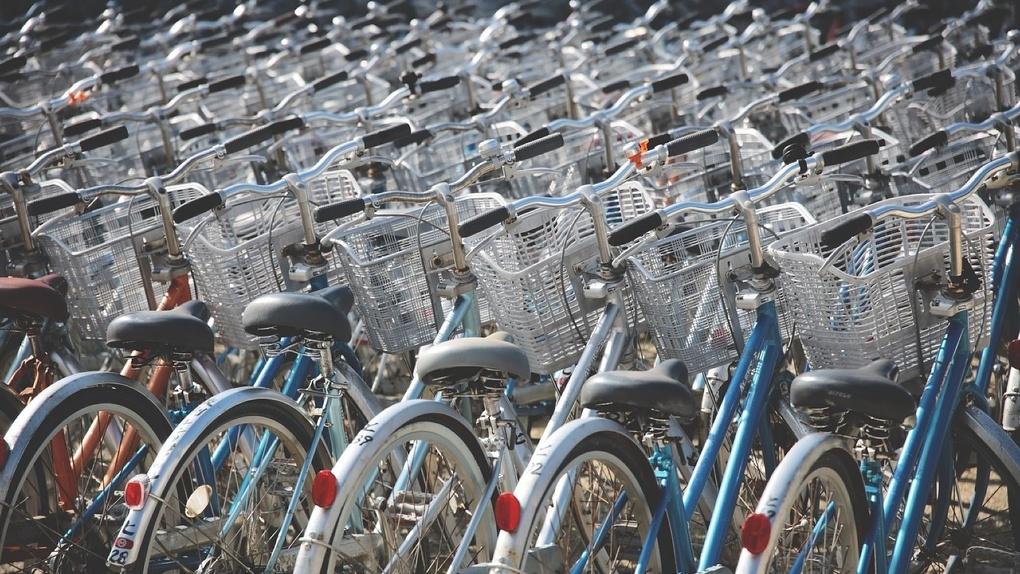 Омск планируют превратить в велосипедную столицу