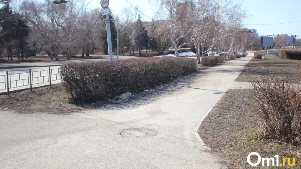 Новые внезапные смерти. На омских улицах найдены тела еще нескольких мужчин