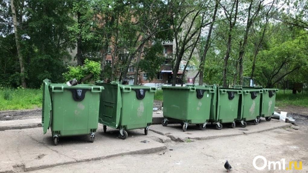 Новый подрядчик по замеру омского мусора в летний период получит 2,3 миллиона рублей
