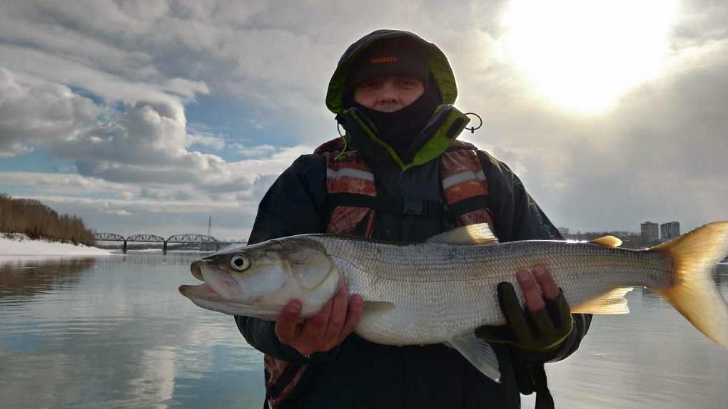 Новосибирец поймал огромную рыбу, занесенную в Красную книгу России