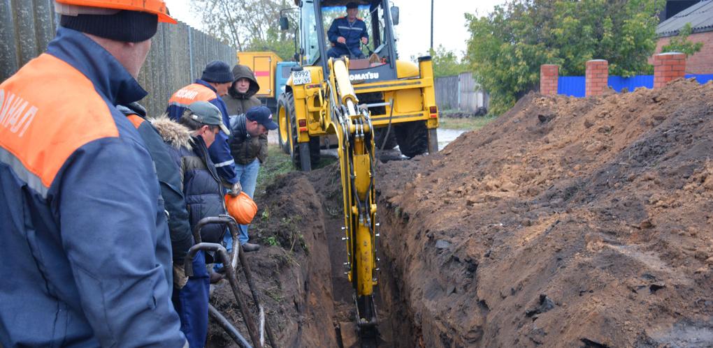 Работники «Водоканала» на юге Омской области наткнулись на мамонта