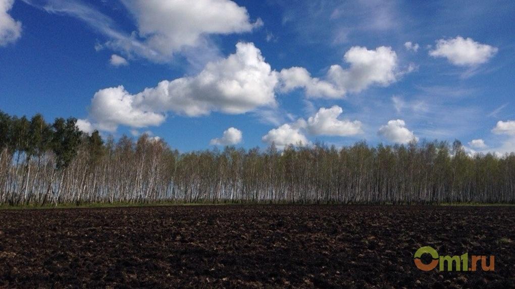 Снижение цен на ГСМ в Омской области обсуждается на федеральном уровне