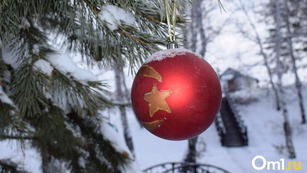 Новый год без массовых гуляний: в Новосибирске отменили традиционные праздничные мероприятия