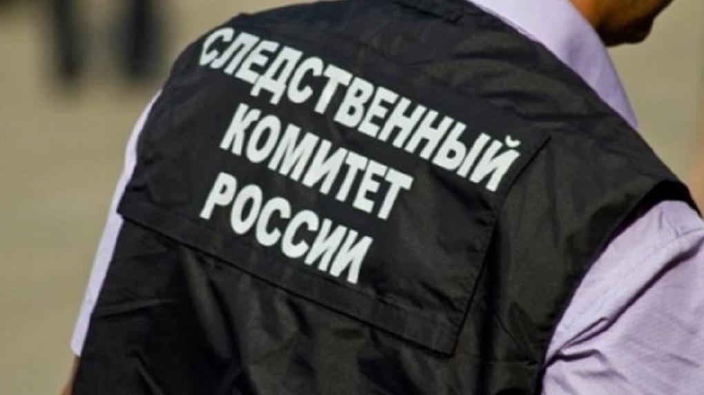 После увольнения Александра Лелеко в новосибирском Следкоме начались массовые проверки