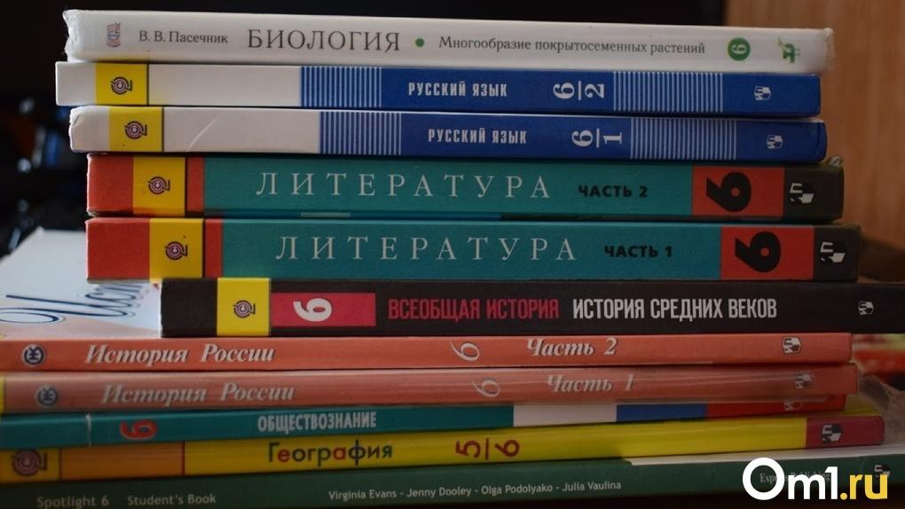 Для сельских школьников в Омской области могут отменить дистанционную учебу