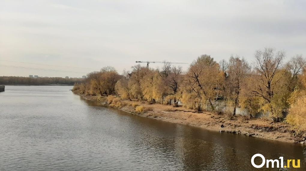 После публикаций видео с масляными пятнами прокуратура нашла в омской реке нефть и взвешенные вещества