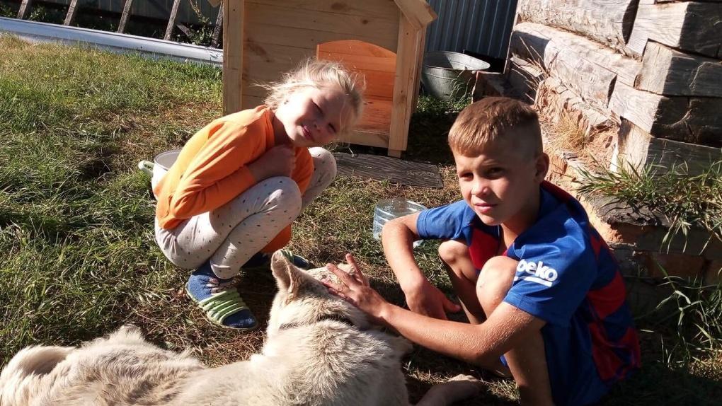 Омского пса, который провёл год на привязи и ел землю от голода, приютит семья из США