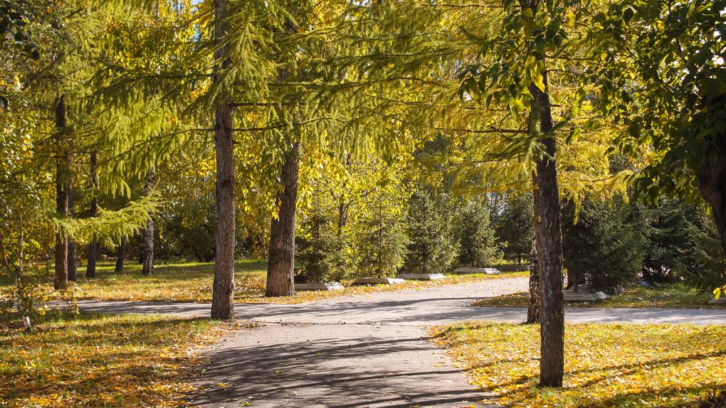 «Скверный обзор»: где погулять омичам этой осенью?