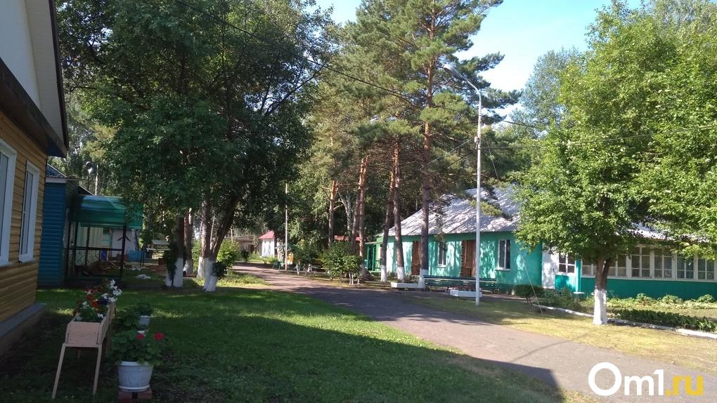 Детские загородные лагеря в Омской области в 2020 году не откроют
