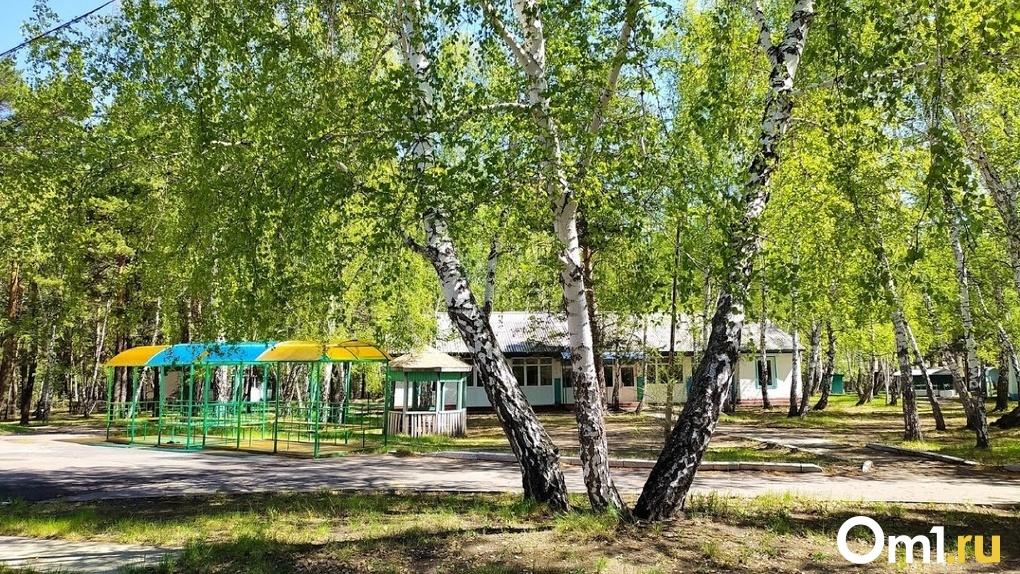 Два оздоровительных лагеря в Омской области не примут детей этим летом