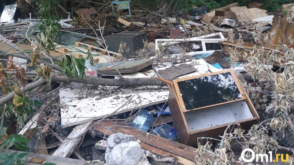 Новосибирск на пороге мусорного апокалипсиса? Перевозчики расторгли договоры с регоператором