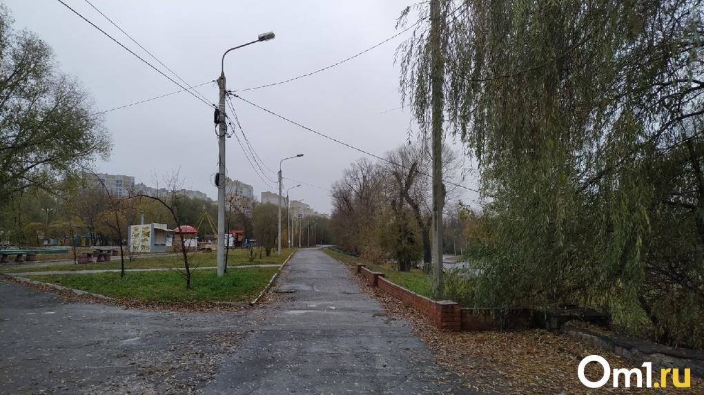 Омский парк «Зелёный остров» отдали новому владельцу