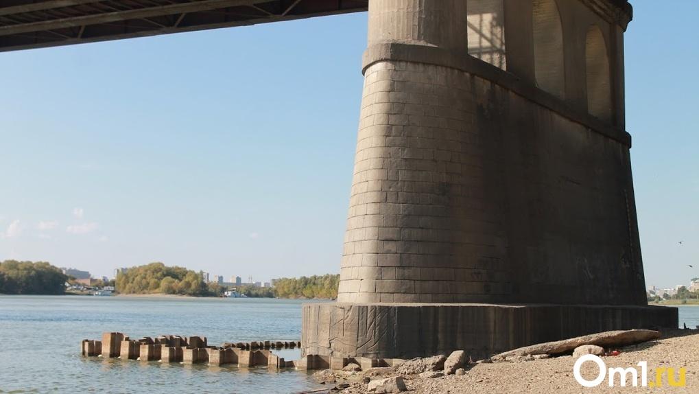 Омские волонтёры начали поиски парня, который упал с Ленинградского моста
