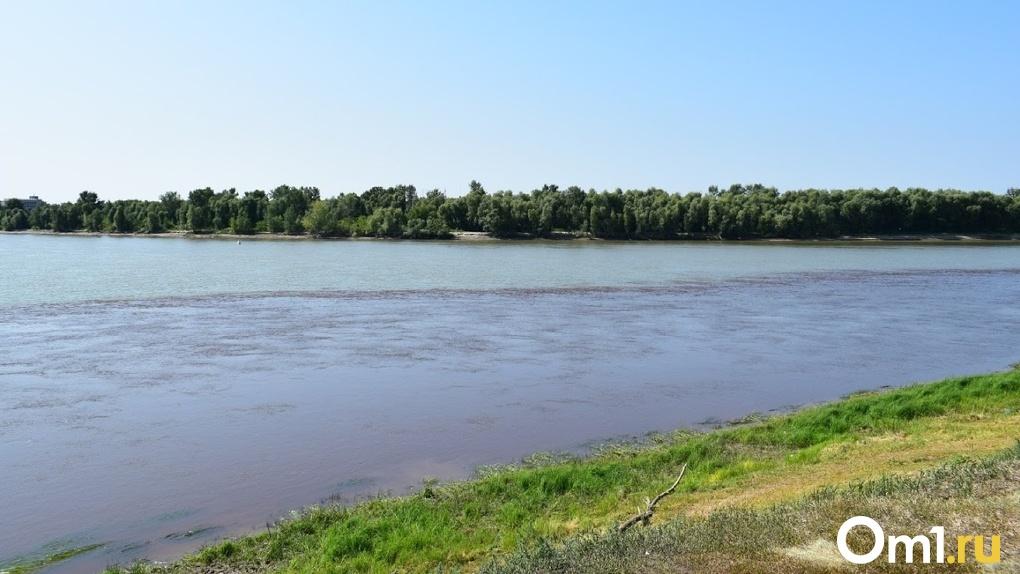 В Омской области на берегу водоёма нашли труп мужчины