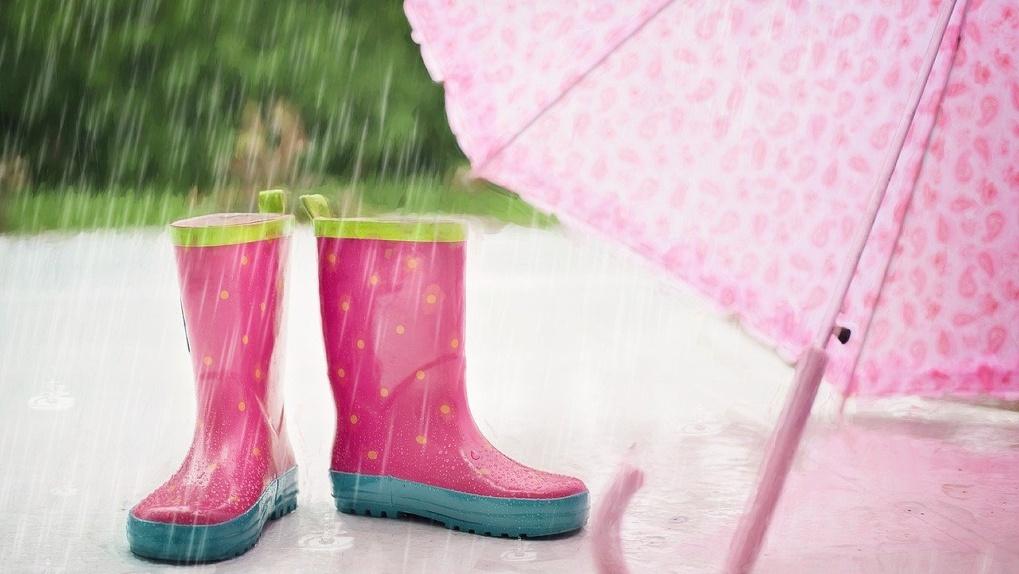 Дождь и жару прогнозируют новосибирские синоптики на предстоящий уик-энд