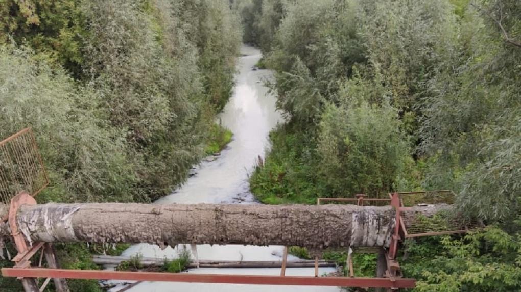 Мэр Новосибирска анонсировал наказание для сливавших ядовитые отходы в реку Тулу