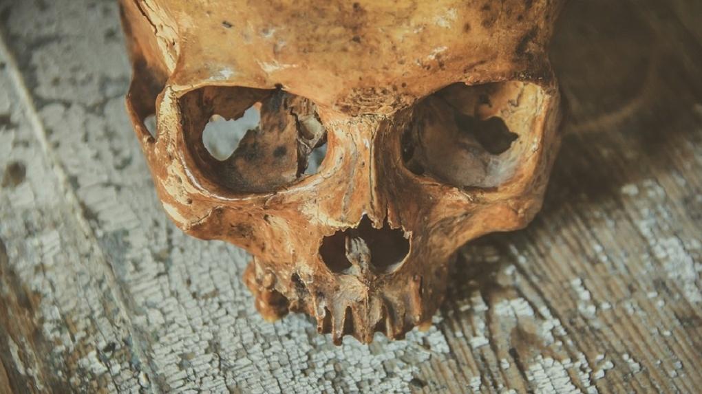 На омских дачах нашли гнилой труп