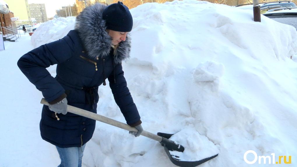 Снежный коллапс: стало известно, какая погода ждёт новосибирцев в ноябре