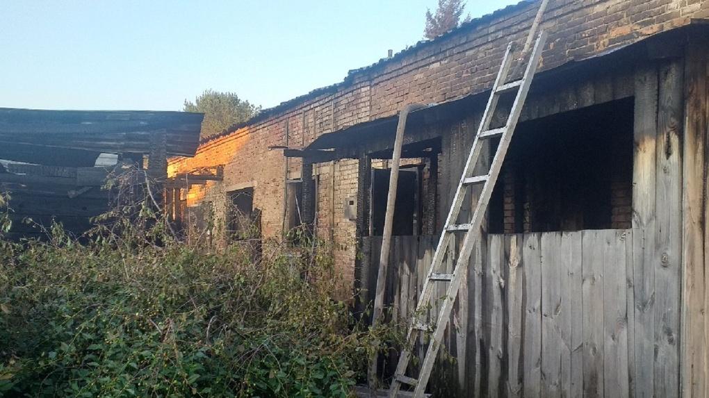 В Омской области пожар оставил без дома целую семью