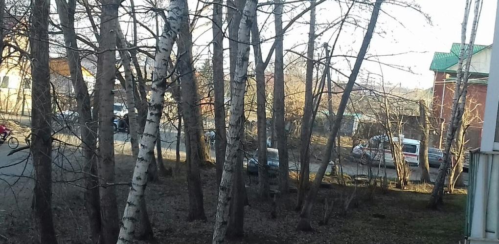 В Омске на мусорке нашли противотанковые мины