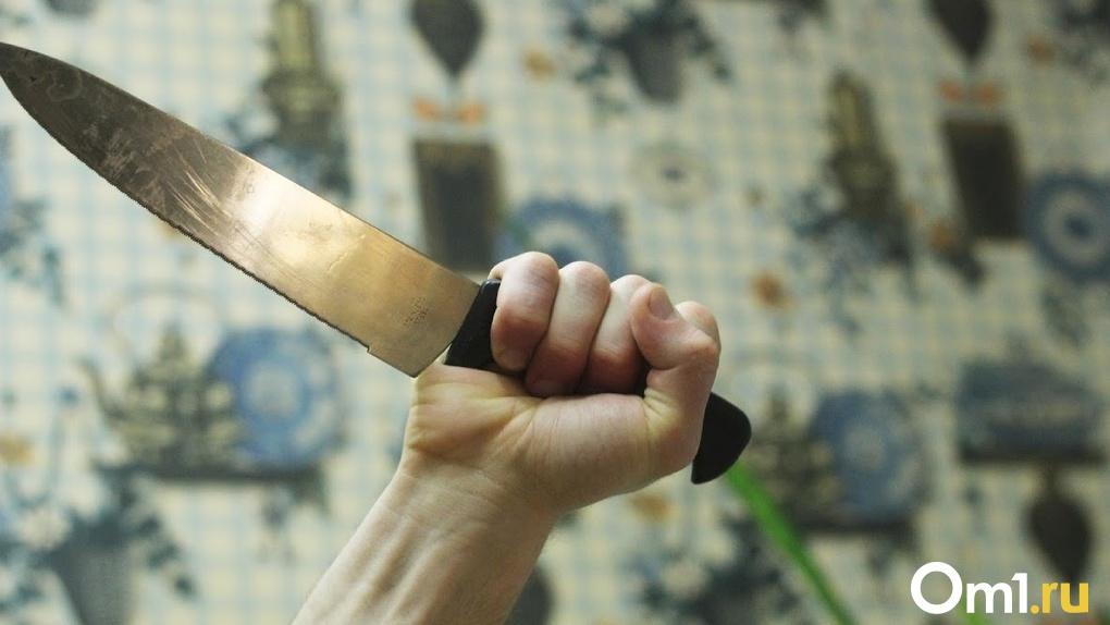 Украл металл и защищался ножом. Омские силовики поймали дачного вора