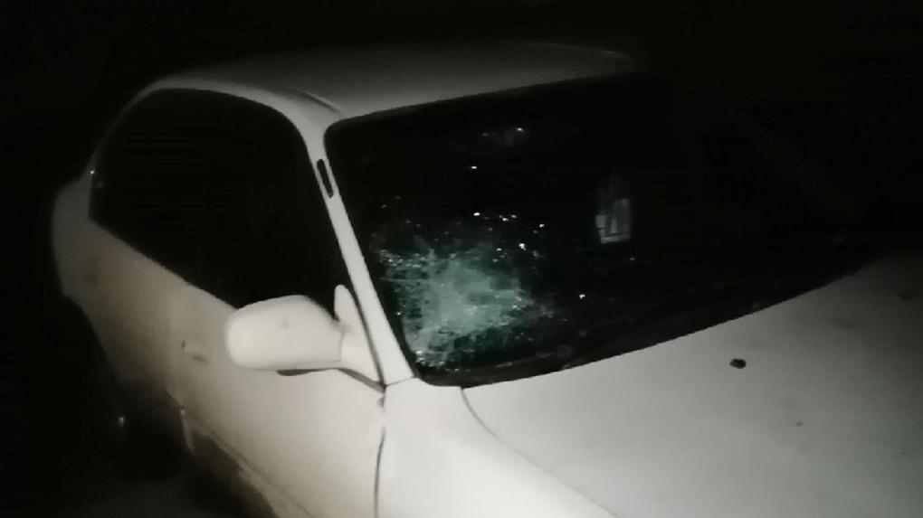 Сотрудники ГИБДД жестоко избили пьяного водителя дубинками под Новосибирском