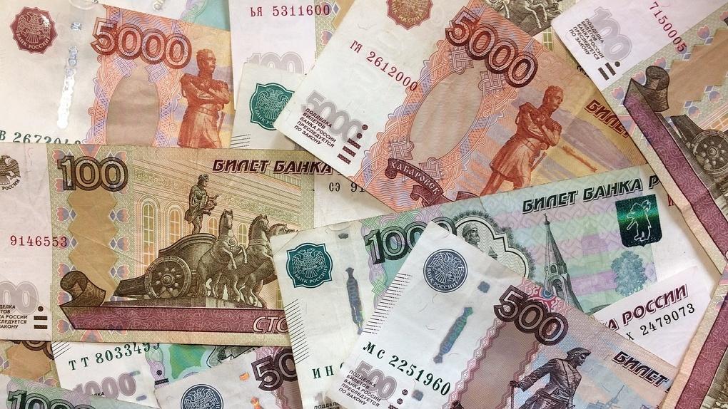 Безработная жительница Новосибирска вывела 30 миллионов через фирму-однодневку