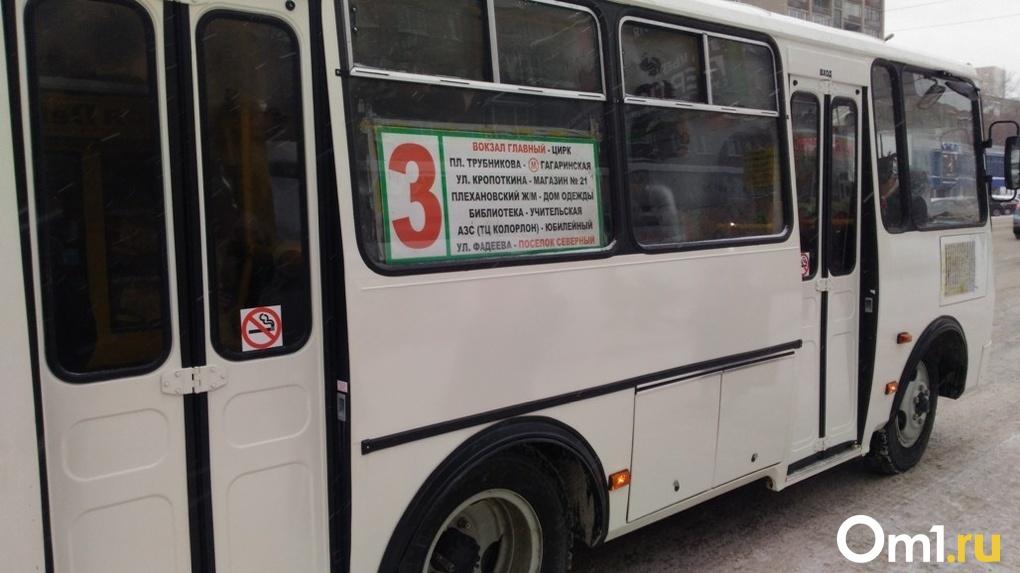 Новосибирским перевозчикам запретили высаживать детей