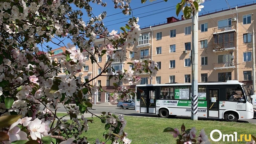 В Новосибирске перекроют движения на 9 Мая: как проехать по городу