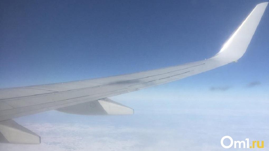 Самолёт с оторванным крылом обнаружили в новосибирском аэропорту