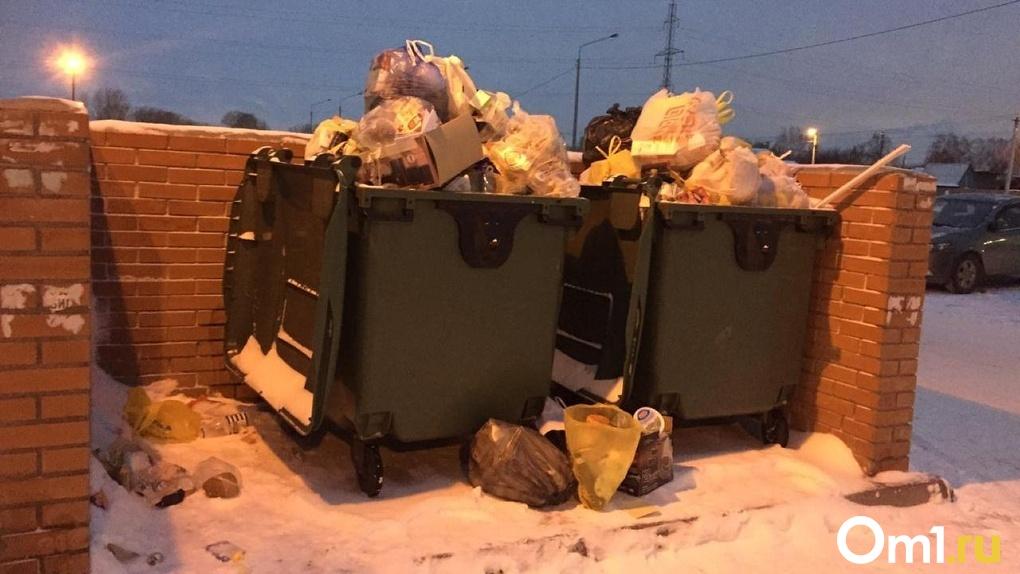 Власти Новосибирской области рассказали, когда будет решён вопрос новогоднего мусорного коллапса