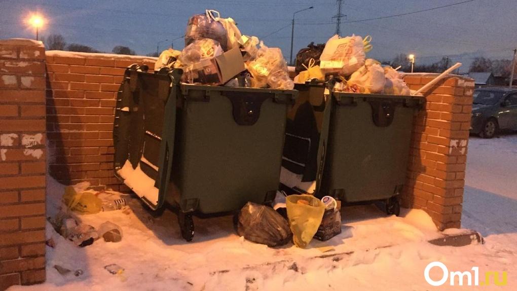 11 тысяч тонн мусора выбросили новосибирцы до Рождества
