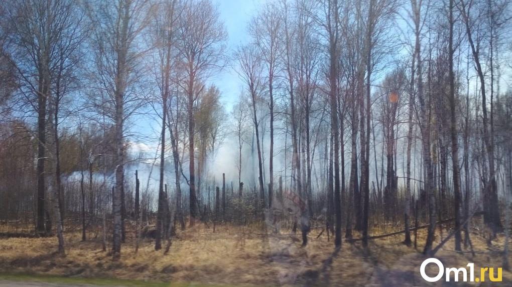 Свыше 260 тысяч рублей штрафов назначено жителям Новосибирской области за поджог