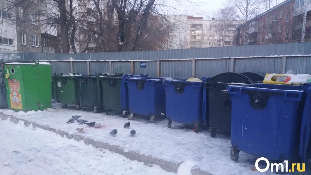 В Новосибирске могут поменять мусорного регионального оператора