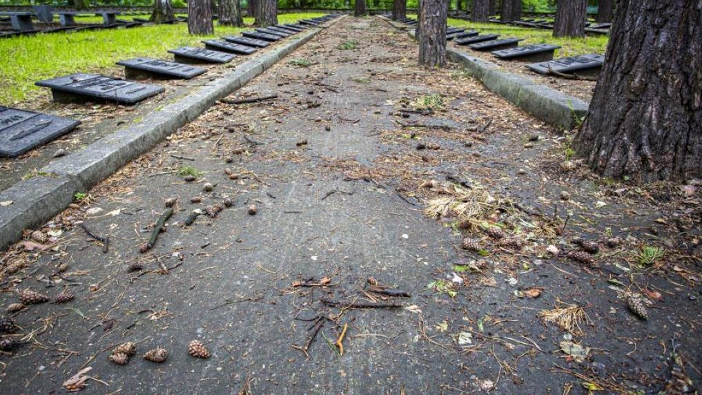 Новосибирцев возмутило состояние воинского кладбища