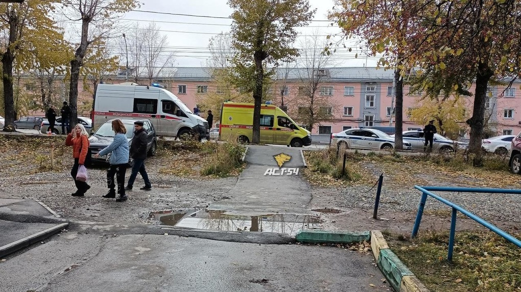 Не дошла 200 метров: мать девочки, погибшей под колёсами скорой в Новосибирске, рассказала о трагедии