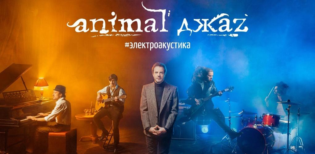 Animal ДжаZ едет в Омск с #электроакустикой