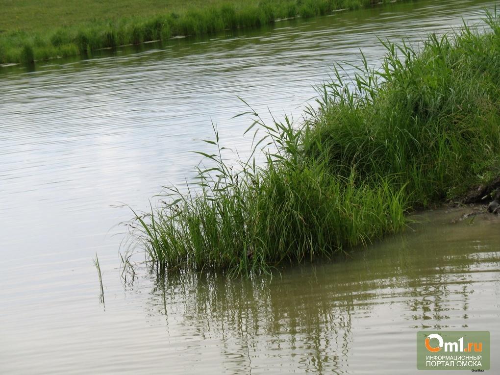 Озеро в Ленинском округе Омска углубят и облагородят