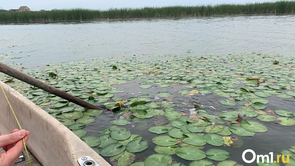 В Омской области нашли тело второго рыбака, который пропал 10 дней назад