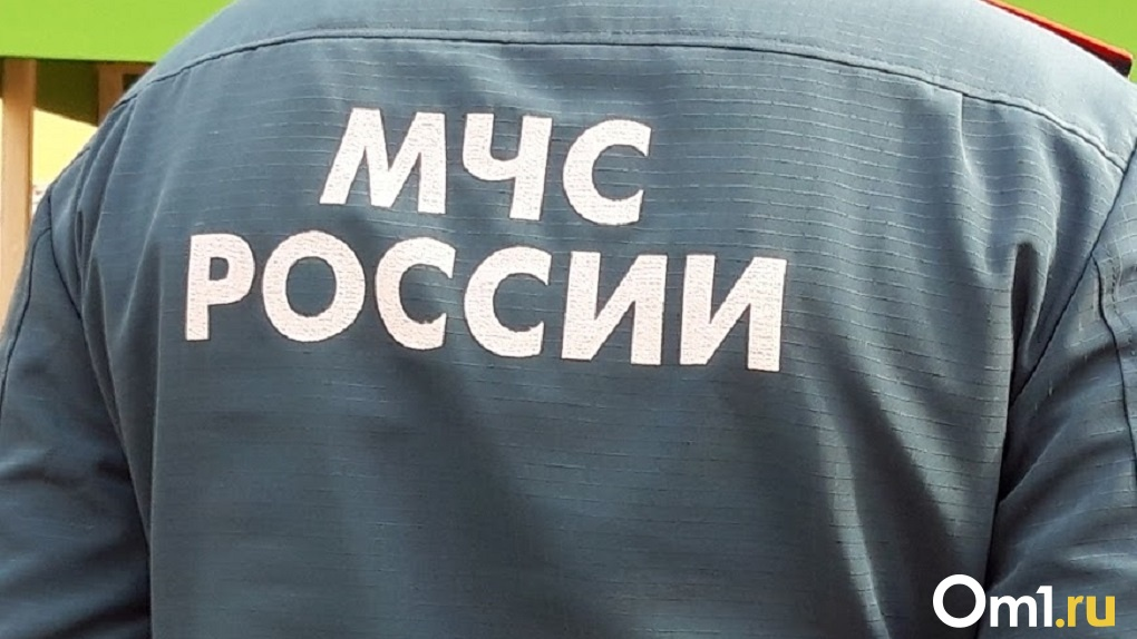 Управление МЧС по Новосибирской области предупредило горожан о сильном ветре и гололёде